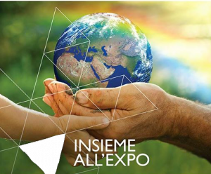 insieme-all-expo