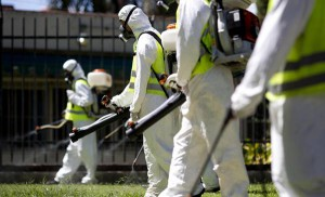 A fumigation brigade sprays an area of Chacabuco Park in a Aedes mosquito control effort, in Buenos Aires, Argentina, Wednesday, Jan. 27, 2016. Zika virus is spread by the same Aedes mosquito as dengue fever and chikunguya. The U.S. Centers for Disease Control says researchers have found strong evidence of a possible link between Zika and a surge of birth defects in Brazil. (ANSA/AP Photo/Natacha Pisarenko)